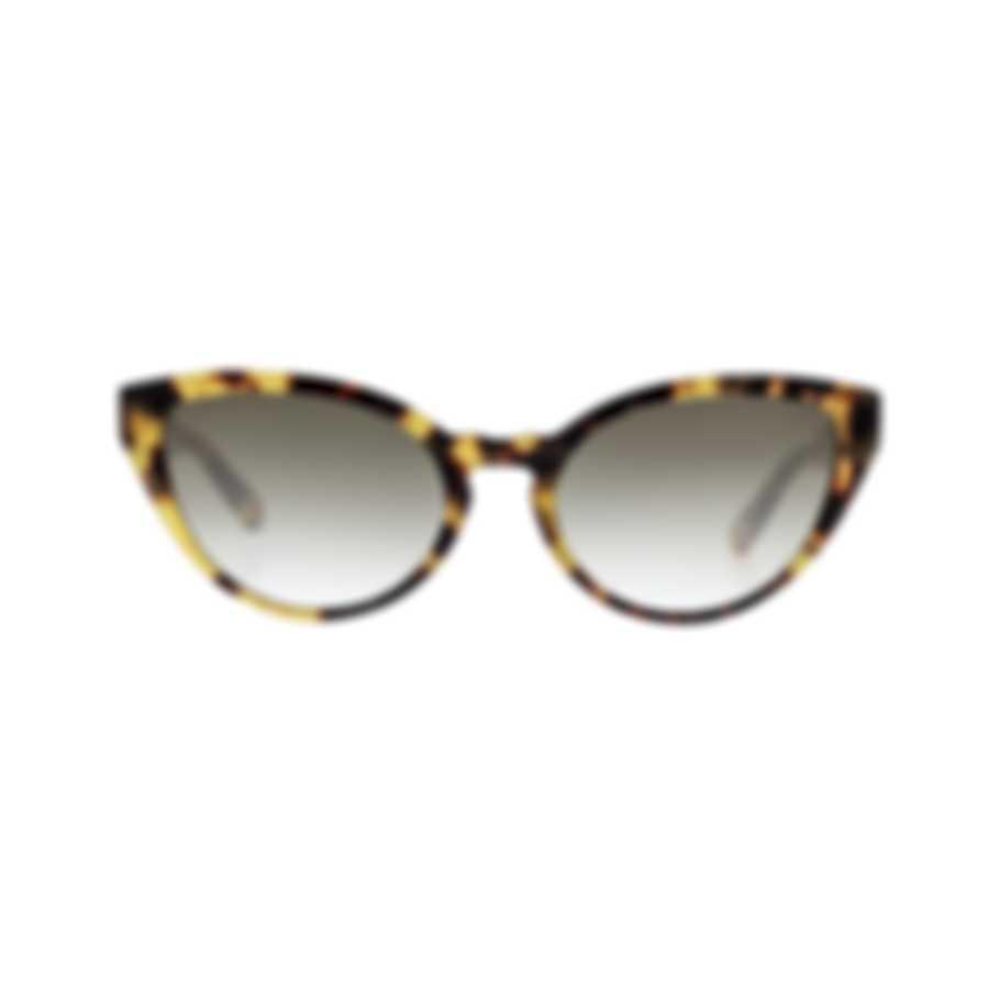 Chloe Women's Havana And Gradient Smoke Acetate Sunglasses CE757S-845