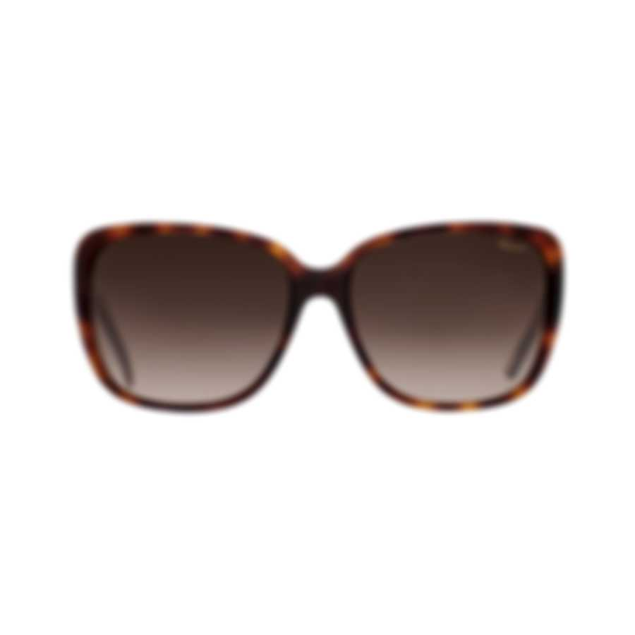 Chopard Imperiale Brown & Tortoise Brown Retro Square Sunglasses 95221-0243