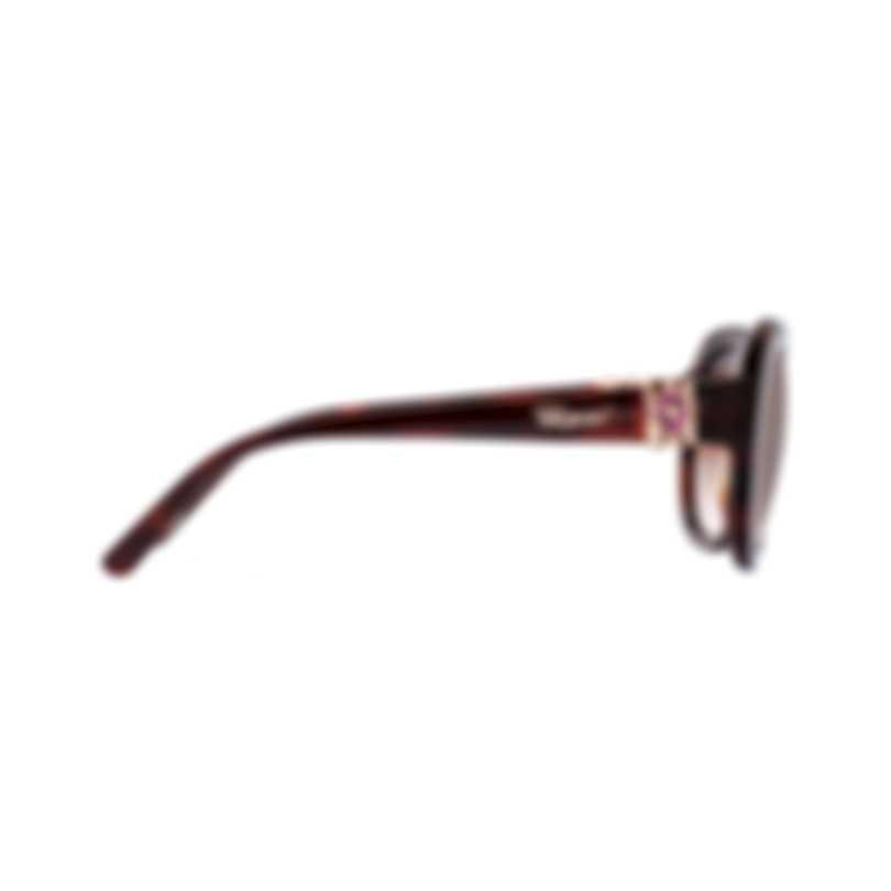 Chopard Imperiale Brown Gradient, Dark Havana Cat-Eye Sunglasses 95221-0350
