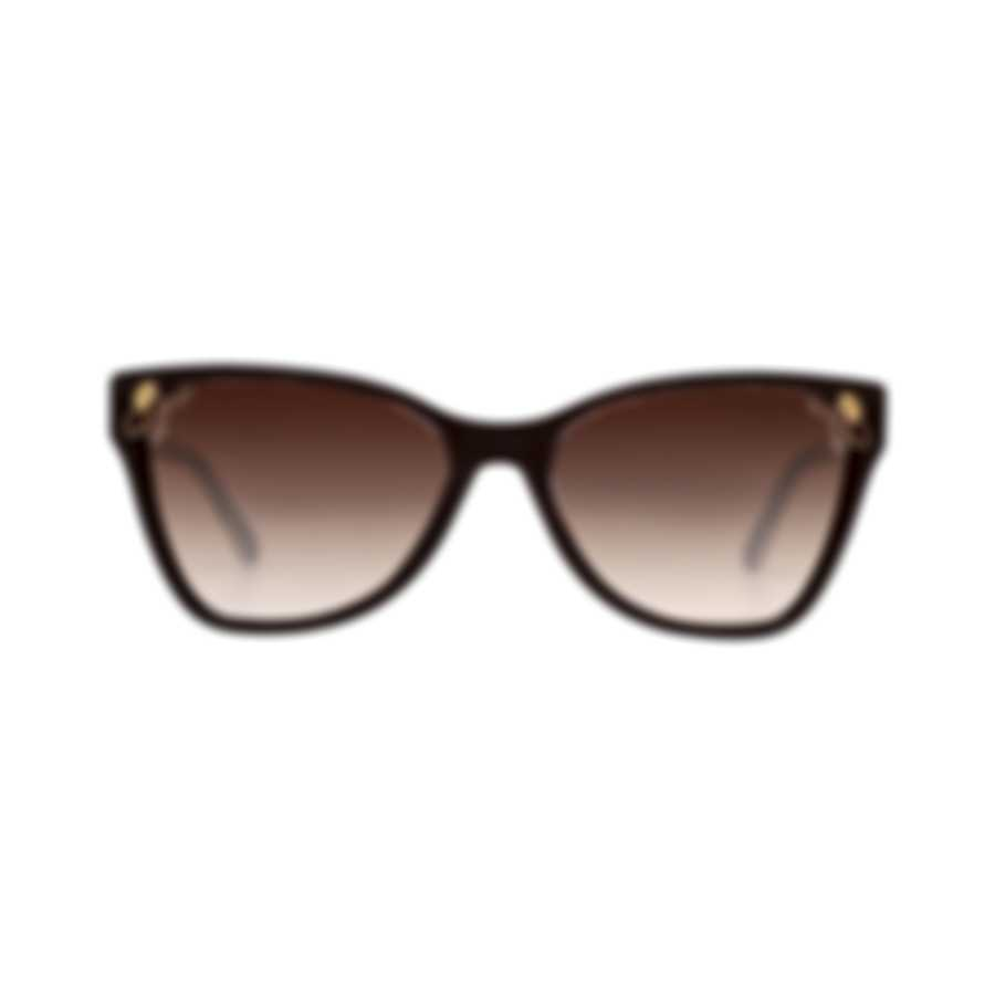 Bvlgari Brown Gradient Women's Acetate Sunglasses BV8208-545413