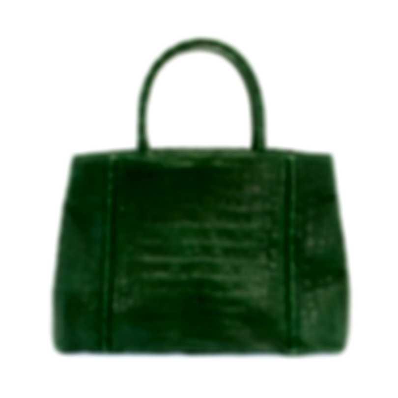 Nancy Gonzalez Resort 2020 Green Crocodile Handbag CS114011-AC5