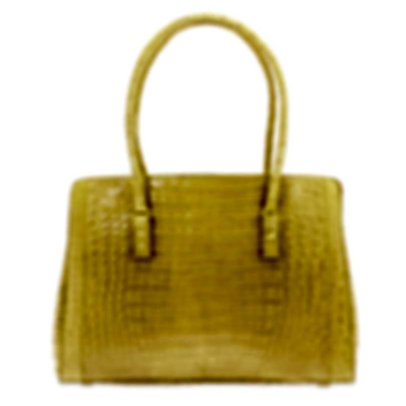 Nancy Gonzalez Resort 2020 Yellow Python Handbag CW145162-DB3