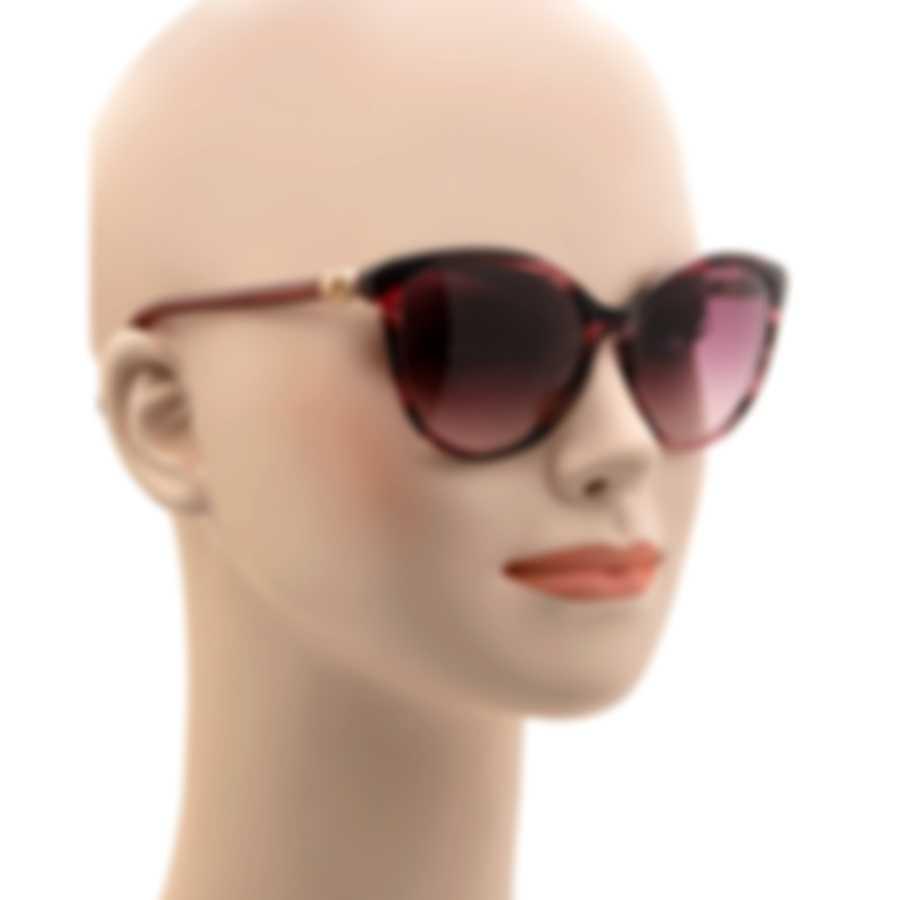 Swarovski Shiny Bordeaux & Bordeaux Sunglasses SK0147-5569T