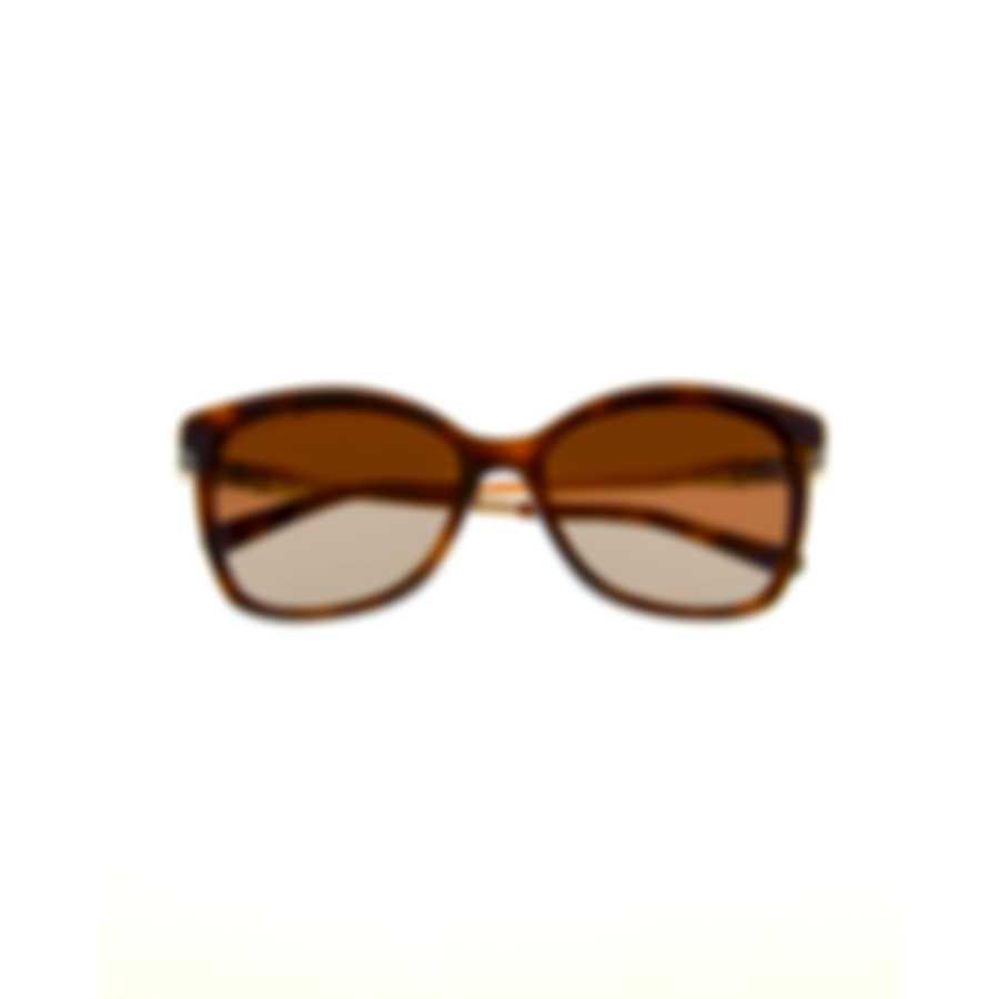 Swarovski Dark Havana & Brown Sunglasses SK0154-H-5452F